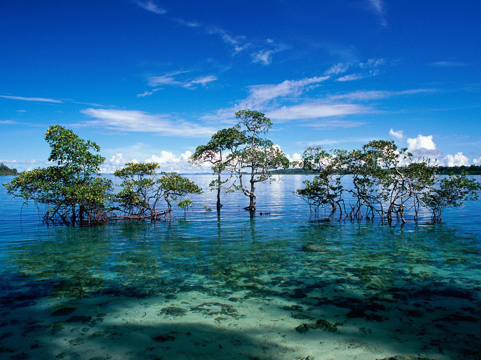 Andaman-and-Nicobar-Islands