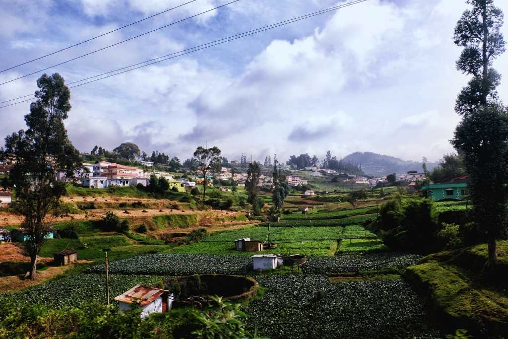 Experience the Natural Bliss of Ooty