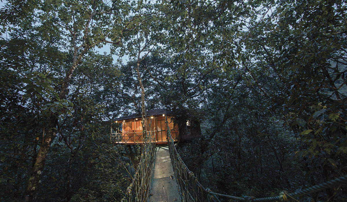 Get the lifetime experience of staying in the exclusive tree house during your Kerala honeymoon