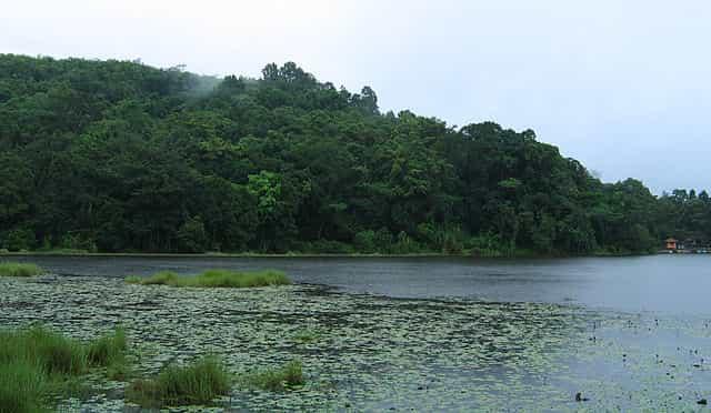 Pookot Lake kerala