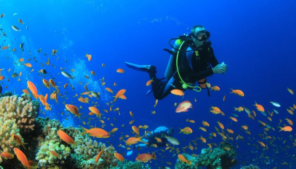 Experience World Class Diving - fun things to do in bali
