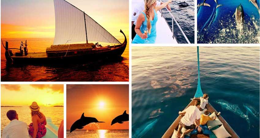sunset-dolphin-cruise-maldives