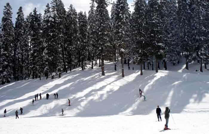 Best Honeymoon Destinations in Shimla