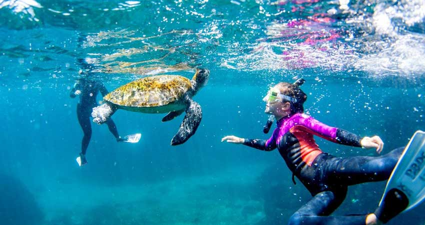 Snorkelling-maldive