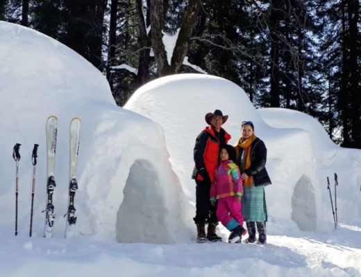 Bookmark the Article, And Tell Us When You Are Going Next to Get the Arctic Feel in Igloo in Manali