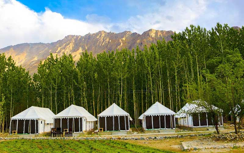 camps in nubra valley