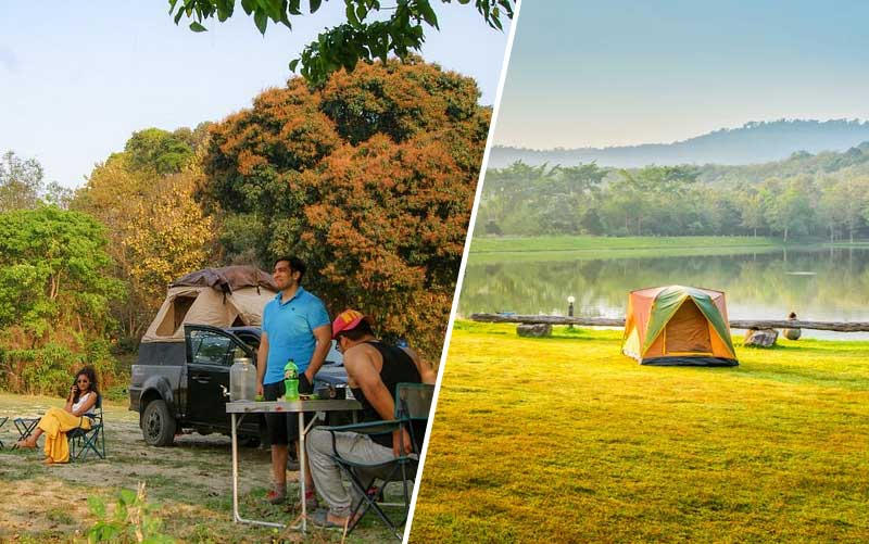 Assam camping