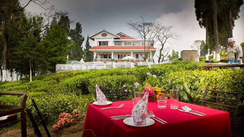 Selim Hill Tea Estate & Retreat