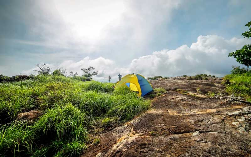 Wayand camping
