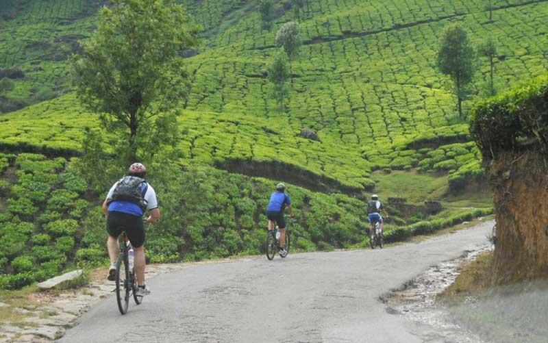 mountain biking munnar