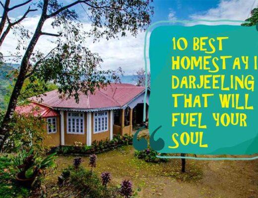 10 Best Homestay in Darjeeling That will Fuel Your Soul