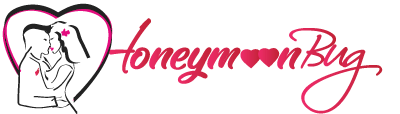 HoneymoonBug Logo