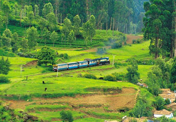 Ooty Hills Tour Package