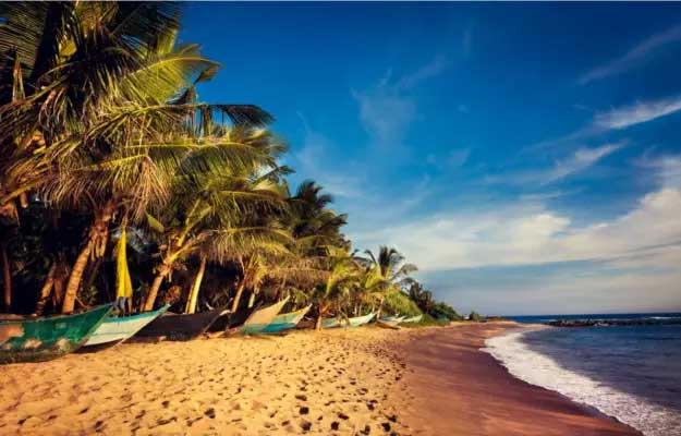 honeymoon in sri lanka package