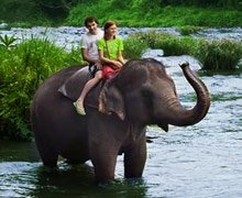 Kandy & Colombo honeymoon package