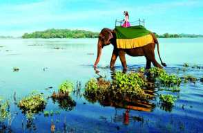 Sri Lanka Honeymoon Packages